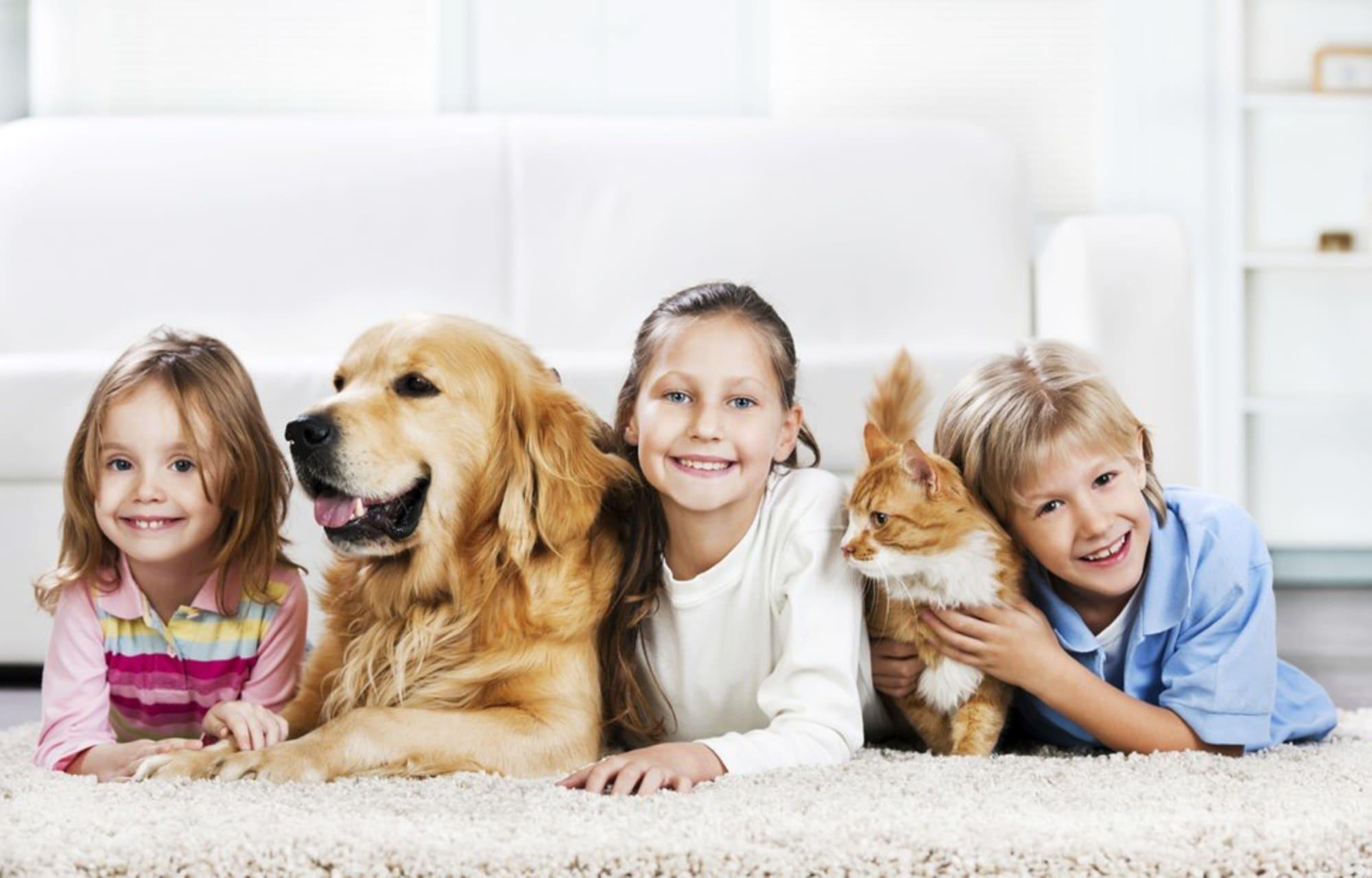 Связь ребенка с домашним питомцем